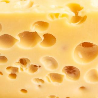 Käse mit Löcher für Homepag Buttersäuregährung